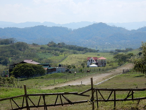 Tonina - boerderij