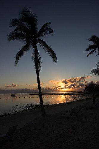 sea cloud tree beach silhouette sunrise boat sand palm mauritius 2016