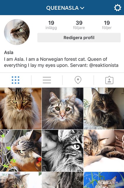 Instagram queenasla