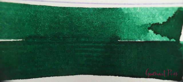 Ink Shot Review Diamine 150th Anniversary Tropical Green (3)