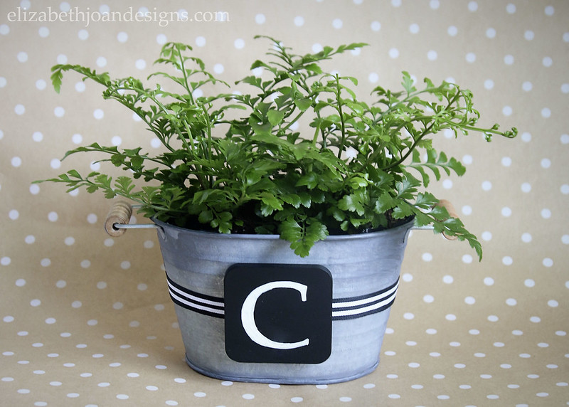 Chalkboard Monogram Planter - super easy and super cute