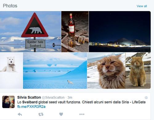 SvalbardTwitter