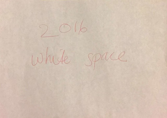 2016 white space