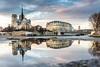 Miroir d'eau temporaire sur Notre Dame