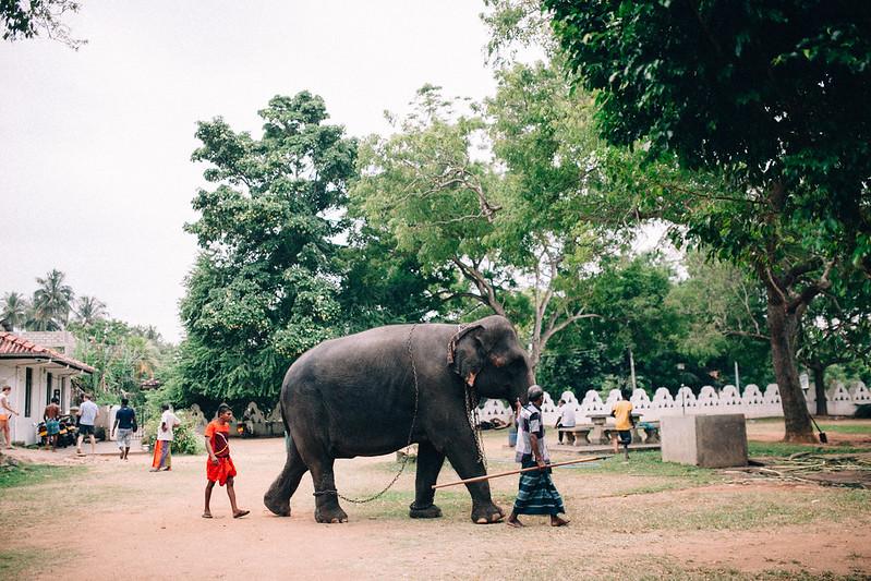 Dondra / Sri Lanka