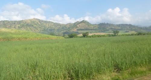 P16-Negros-San Carlos-Dumaguete-Route (5)