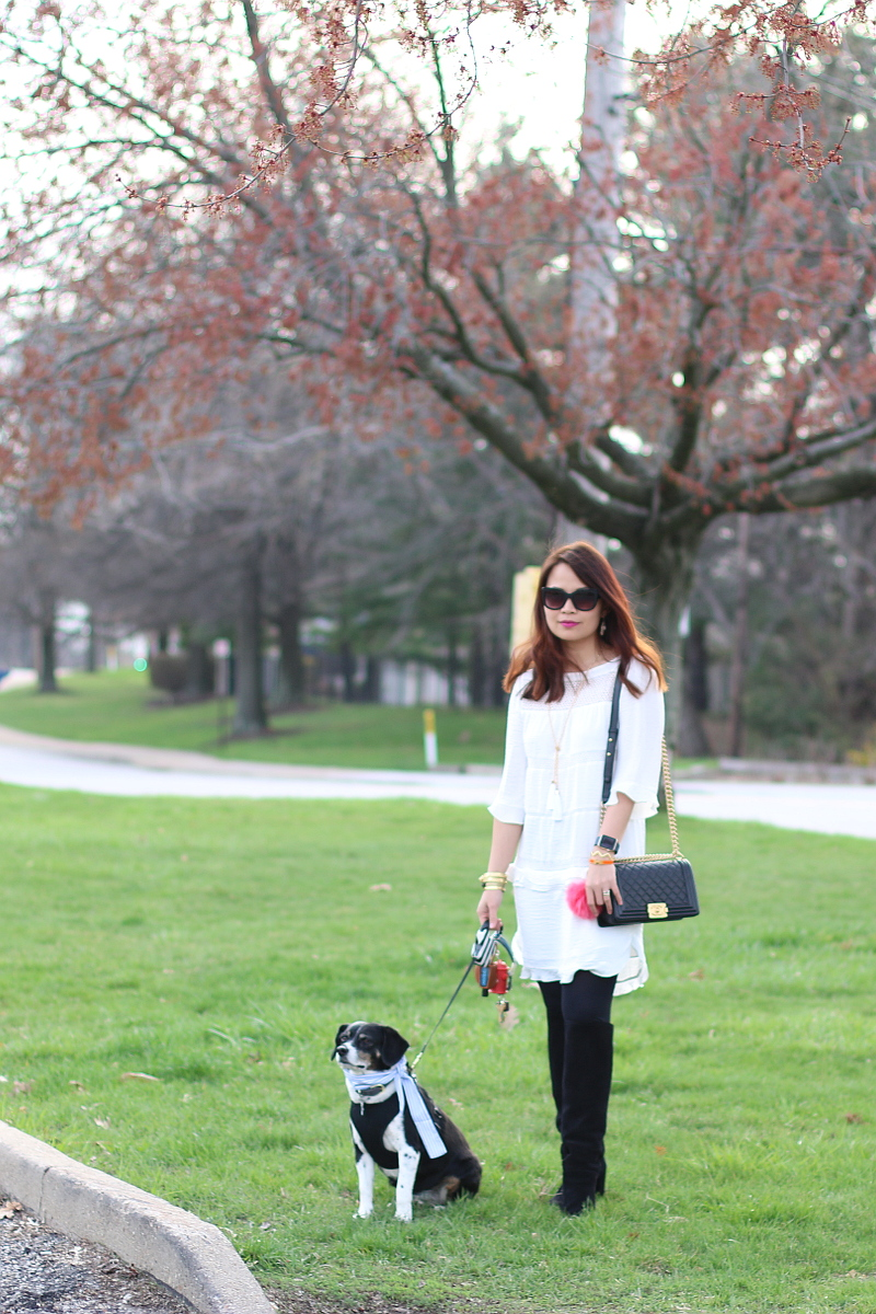 who what wear for target, white shift dress, Topshop tall boots, beagle dog