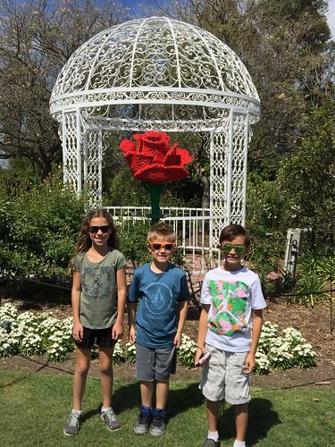 Botanic Gardens PV by MrJonah