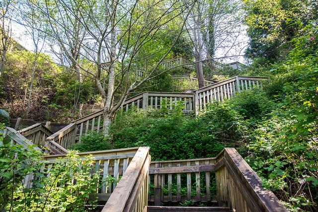 1001 Steps in Ocean Park