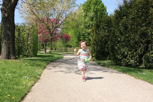 Schoenbrunn: up the garden path