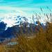 La magia de la patagonia!