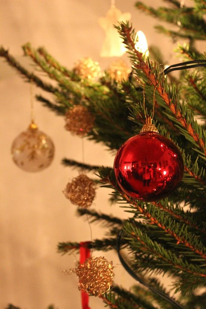 Christmas is coming 11