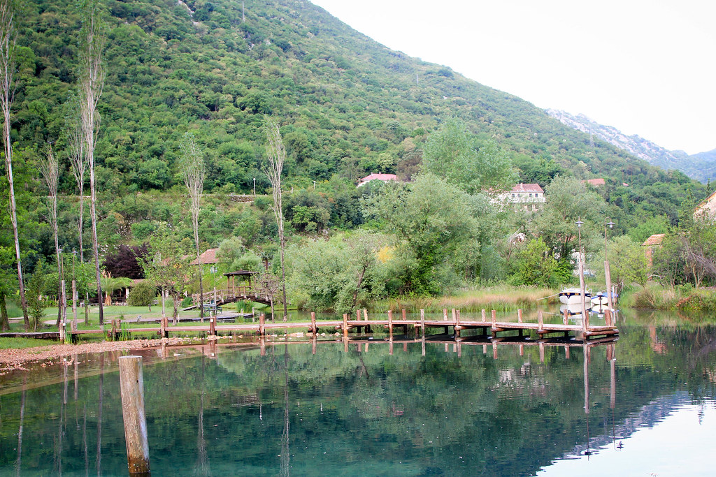 1505_montenegro_1216.jpg
