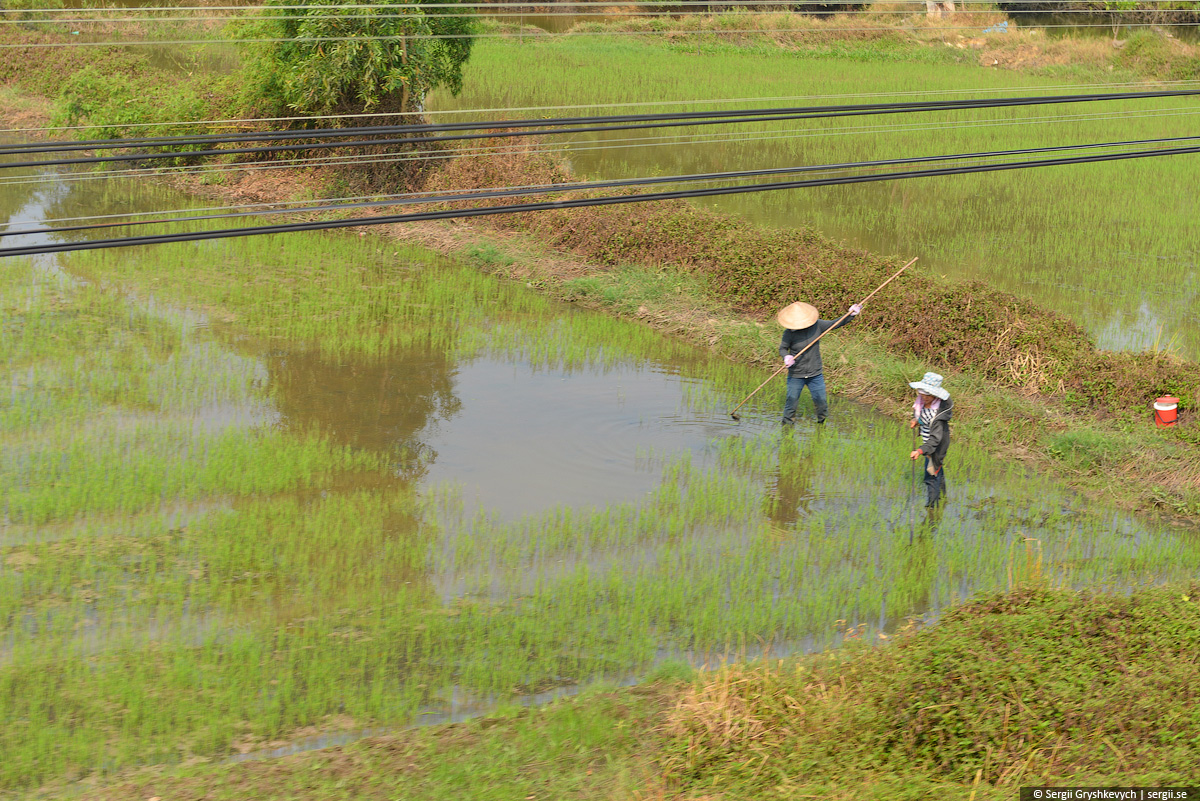 vietnam_reunification_express_train-19
