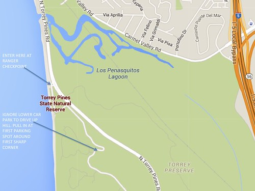 TORREY PINES STATE RESERVE PARKING MAP