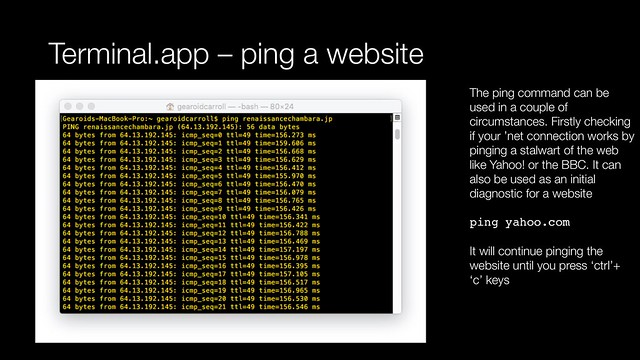 Terminal app - ping a website