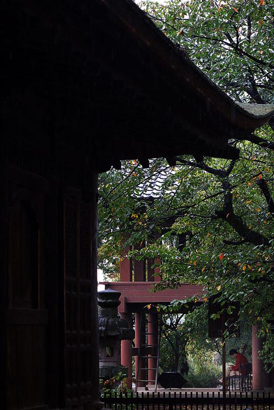 清白寺 の写真