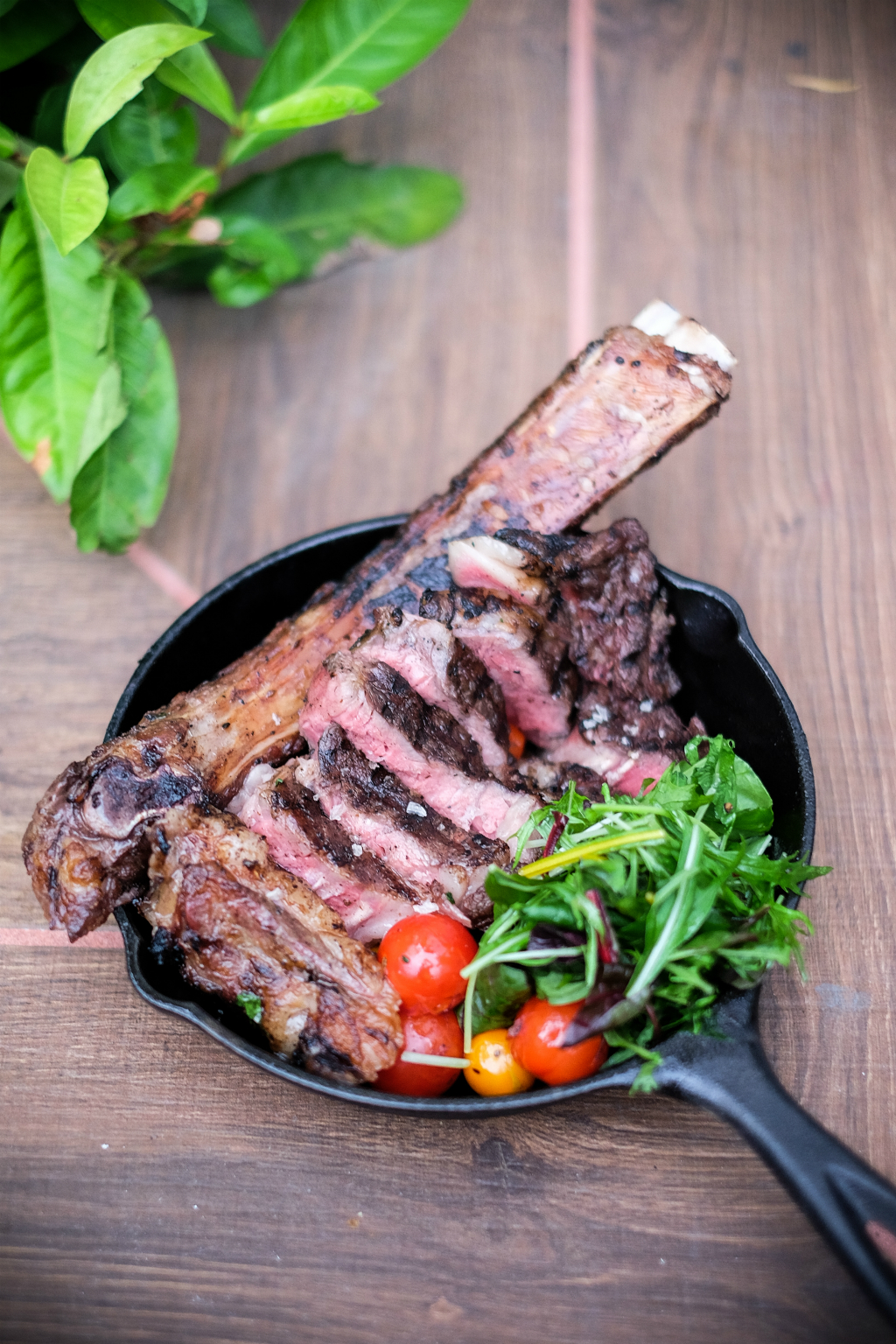 redpan: Beef Short-Rib with Bovil
