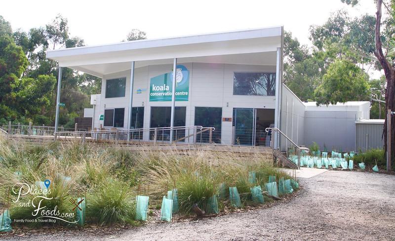 phillip island the koala conservation centre