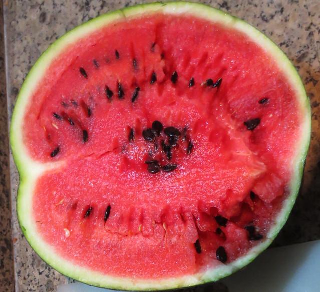 Watermelon-2016-1