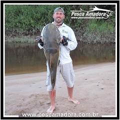 """Nem só de tucunaré vive a Amazônia, os gigantes de couro são um """"trator"""" a parte.  #pescaamadora #pesqueesolte #baitcast #pescaesportiva #sportfishing #fishing #flyfishing #fish #bassfishing #pescador #angler #pirarara #amazonia #riodemeni #rionegro #amaz"""