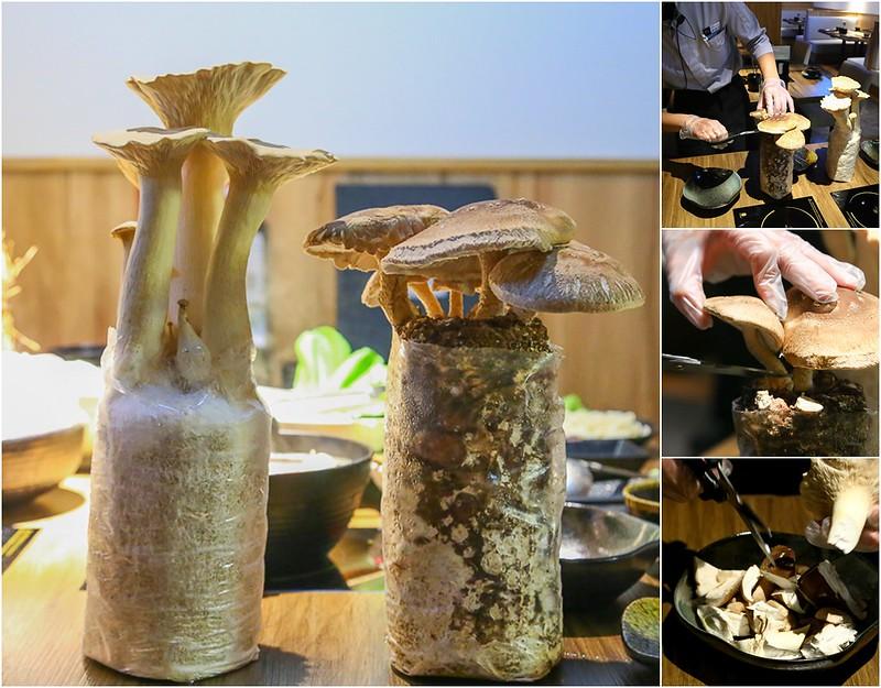 新鮮香菇【台北松山火鍋】南京三民站石頭火鍋推薦「岩說精緻鍋物」,超精緻的火鍋套餐還有現摘的有機香菇!看的到101的餐廳,有包廂