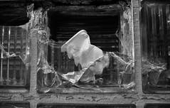 Becher im Glasbaustein 1