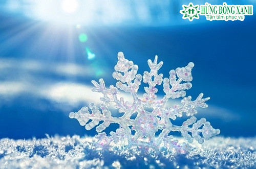 Học ngay những từ tiếng Anh 'lạnh mà không lạnh' trong ngày băng giá