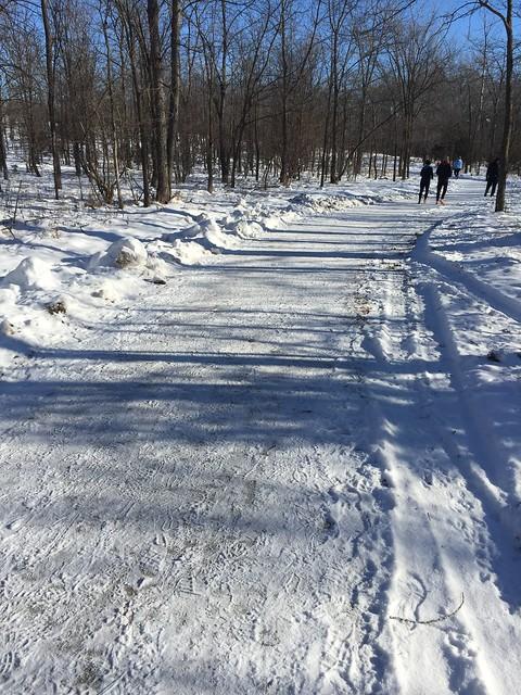 Snowy 5k to start 2016