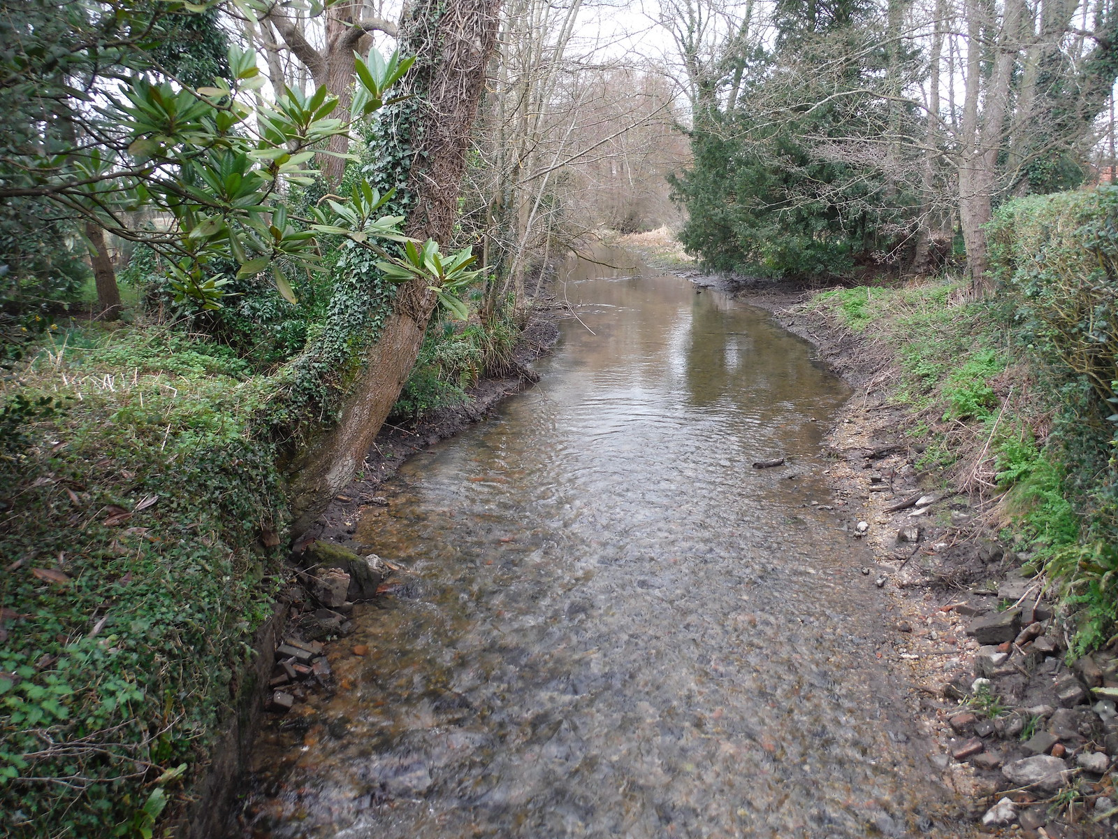 The Pang River, Stanford Dingley SWC Walk 117 Aldermaston to Woolhampton (via Stanford Dingley)