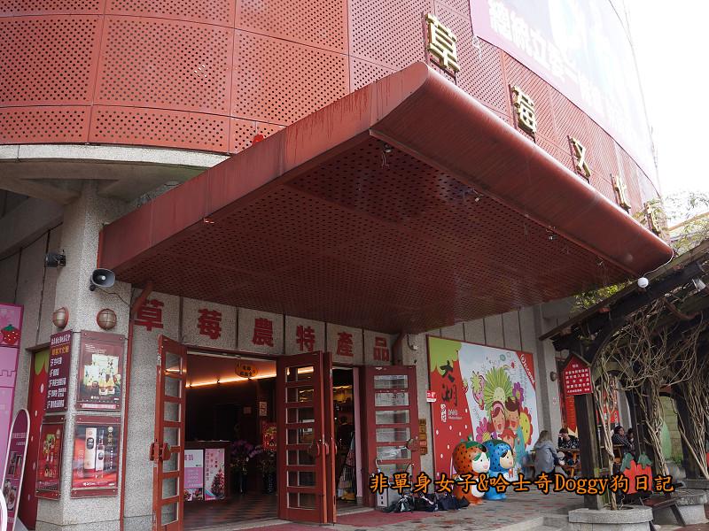 苗栗草莓大湖酒莊清安洗水坑豆腐街07