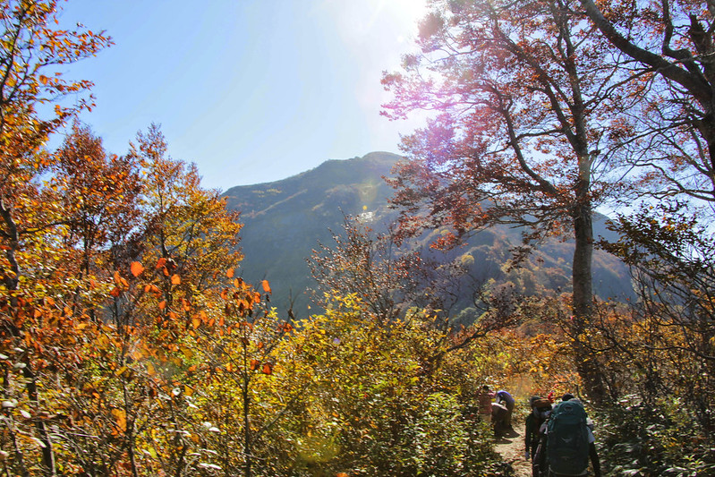 20141019-八海山-0112.jpg