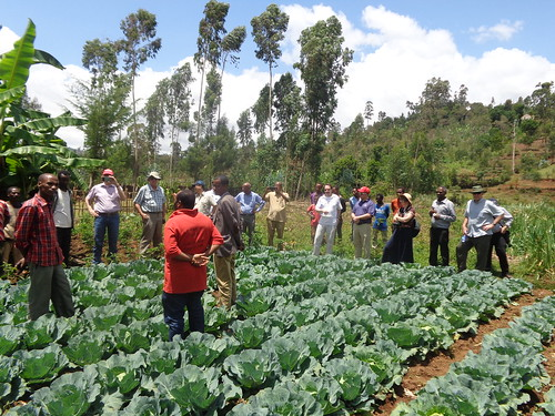 A visit to a vegetable farm (Photo Credit:ILRI\Yoseph Mekasha)