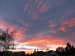 Sunrise 3/10/16
