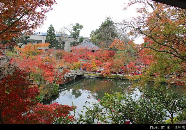 京都-永觀堂024