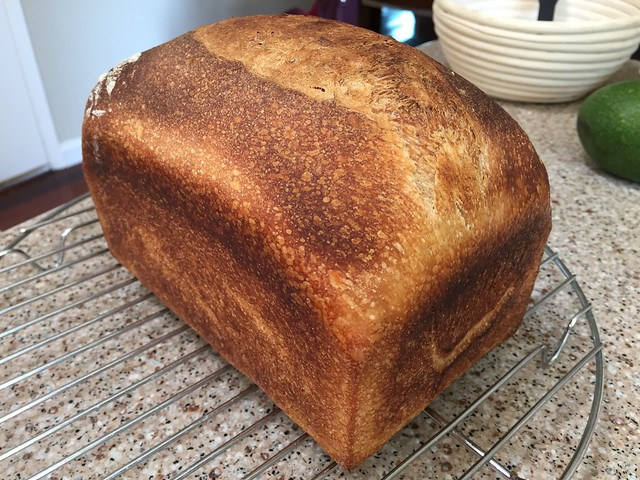 Pullman Country Loaf
