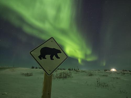 Northern Lights near Churchill, MB