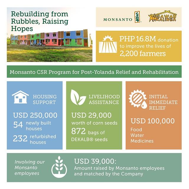 Rebuilding from Rubbles, Raising Hopes