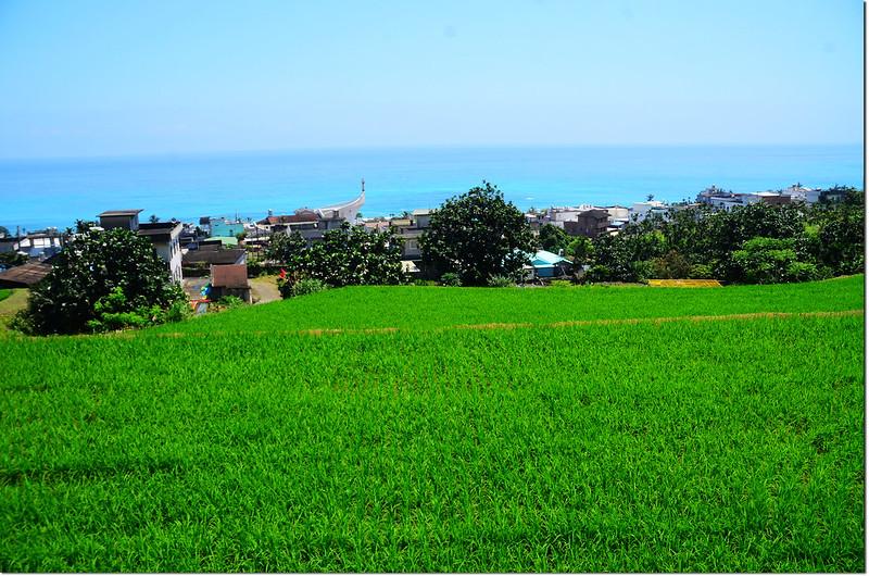 西姑子律山登山途中俯瞰樟原社區及東海岸 1