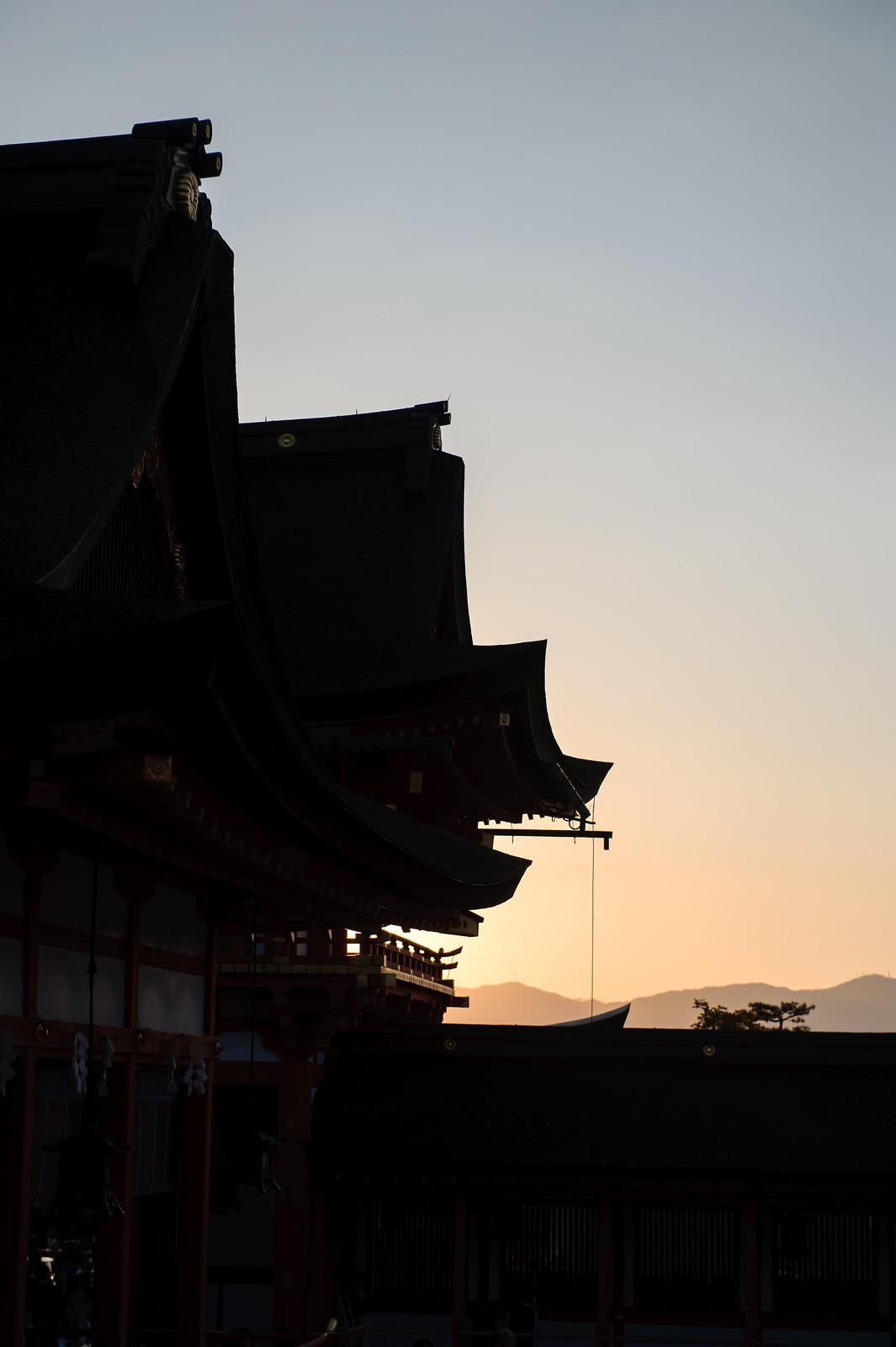 2015VQ@Kyoto-310