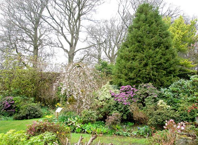 Greenbank Gardens 1