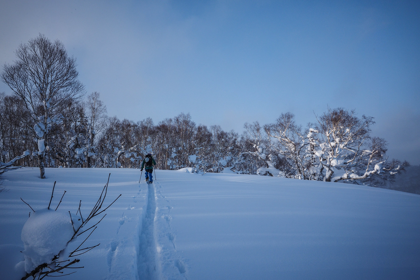 Backcountry skiing near Yama-no-ie Hut (Mt. Okuteine, Hokkaido, Japan)