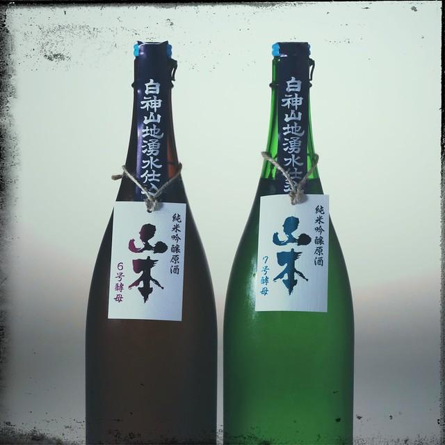 Yamamoto (No.6 yeast and No.7 yeast)