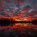 Red Sky by craig.goodwin99
