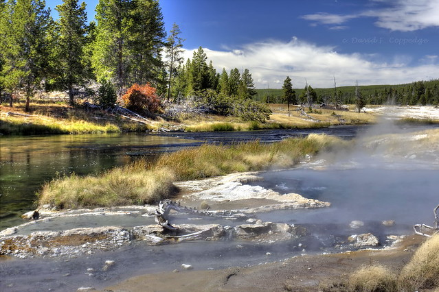River Group: Firehole side of Bath Spring