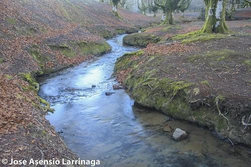 Parque Natural de Gorbeia  #DePaseoConLarri #Flickr -3066