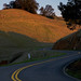 Mount Tamalpais Road by michaelruiz9