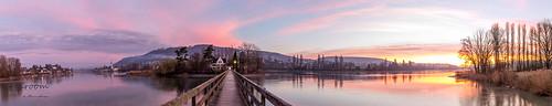 bridge panorama color tree water sunrise landscape island schweiz follow landschaft pictureoftheday baum ch frühling photooftheday picoftheday thurgau fotodestages eschenz inselwerd crearoom bymarcoherger