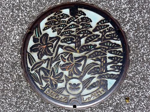 Sada Shimane, manhole cover (島根県佐田町のマンホール)