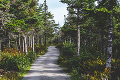 Skyline Trail, Cape Breton Hiking